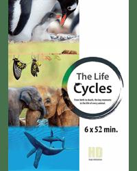 rfr_life cycles_tr